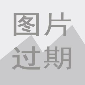 热镀锌LED双连杆式道路灯
